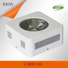 Фитосветильник LXB-GLCOB 100W