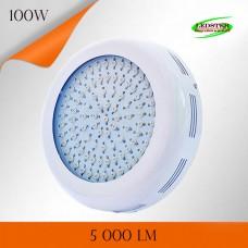 Фитосветильник LXB-GLR 100W